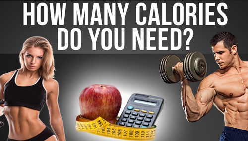 Calculate Calories that You Need in a Day
