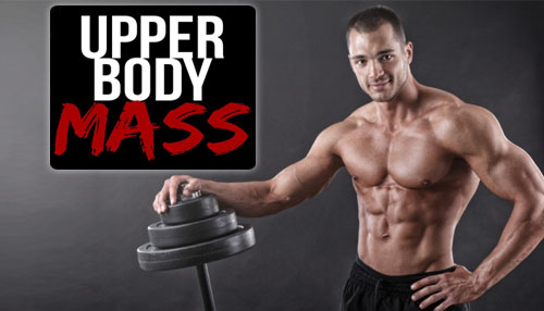 Develop Upper Body
