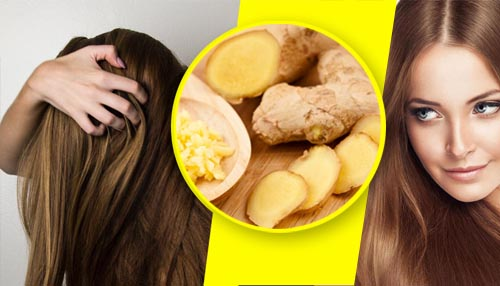 The homemade remedy of ginger for hair loss, dandruff and hair growth